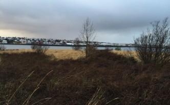 Jordi Pujolà en Islandia. Un día de invierno.