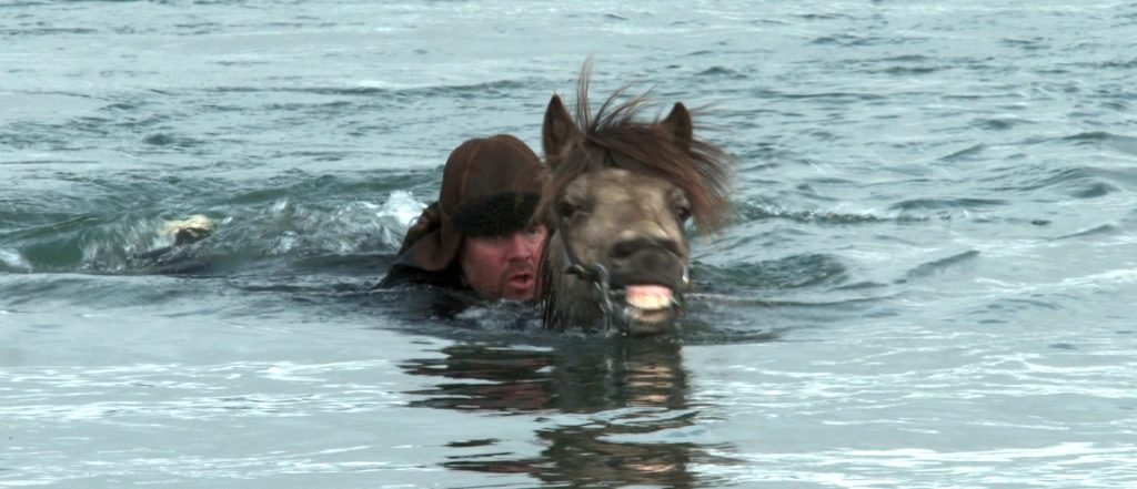 Man swimming with a horse in Iceland