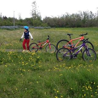 Bicicleta en Islandia