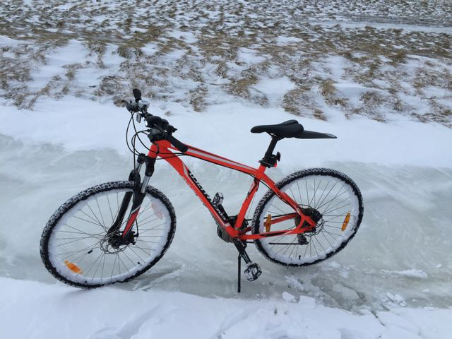 Ir en bicicleta por Reykjavik, Islandia